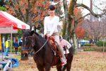 【仕事を頑張るアナタへ】大人の趣味を見つけませんか?乗馬体験 心も体もリフレッシュ!