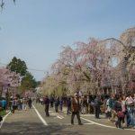 秋田で出会いを見つけよう! おすすめの出会いの場やイベントは?