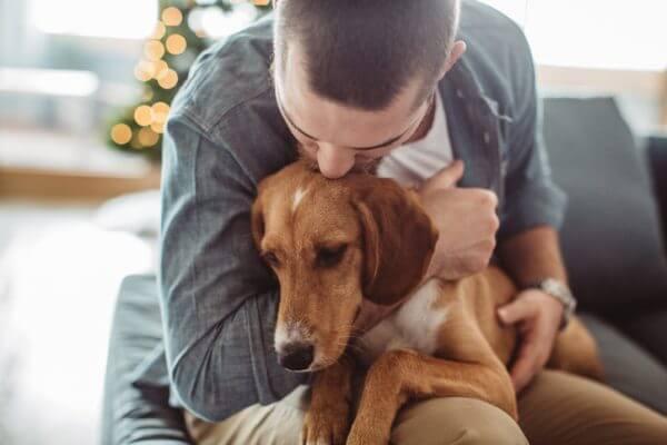 優しくて性格がいい人が多いって本当? 犬好きな人の特徴、あるあるをご紹介